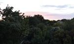 HEIDELBERG SUNRISE 7