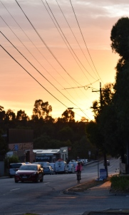 SUNRISE DAREBIN ROAD 5