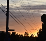 SUNRISE DAREBIN ROAD CROP2